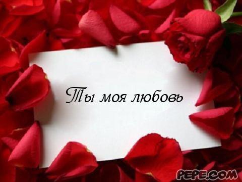 ты моя любовь фото
