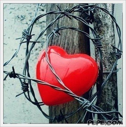 занято сердце картинки