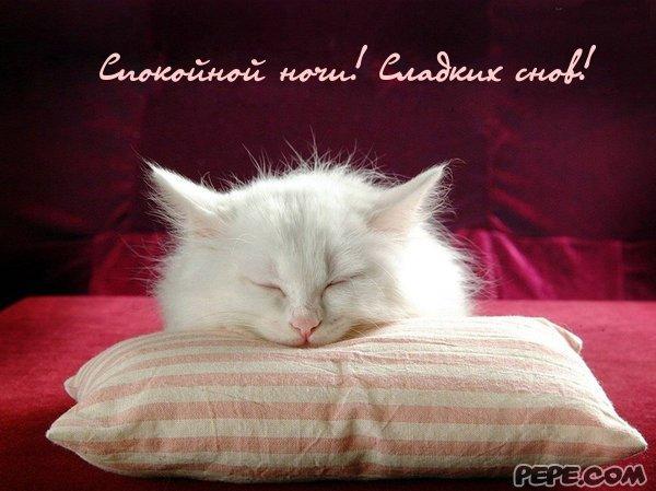 картинки с доброй ночи сладких снов