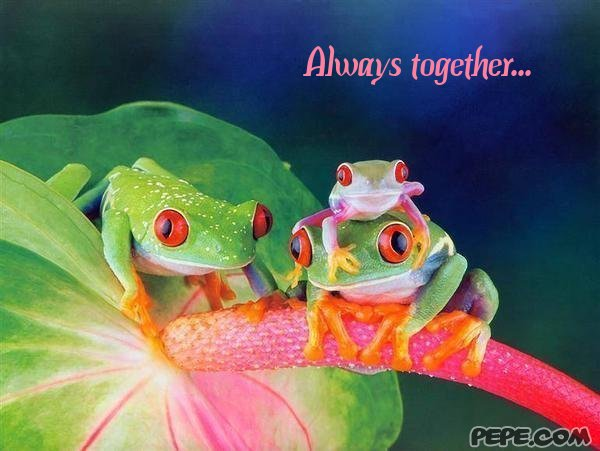Always together...
