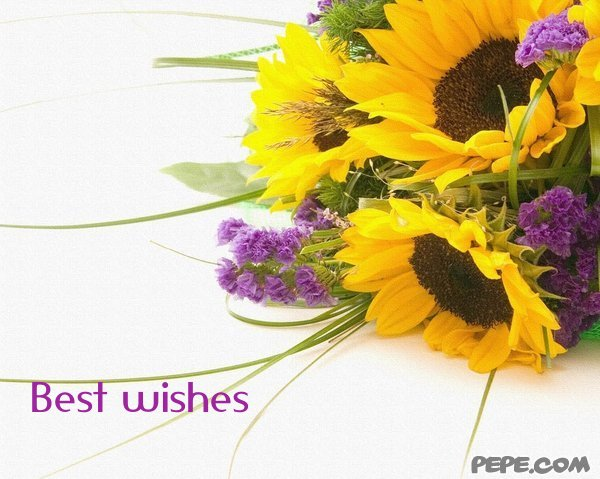 Make your wish my best wishes for you inspirational quotes pictures best wishes greeting card on pepe m4hsunfo