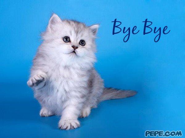 Bye Bye - greeting card on PEPE.com