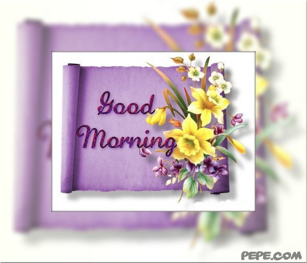 Card hello morning the best collection of quotes good morning greeting card on pepe m4hsunfo Image collections