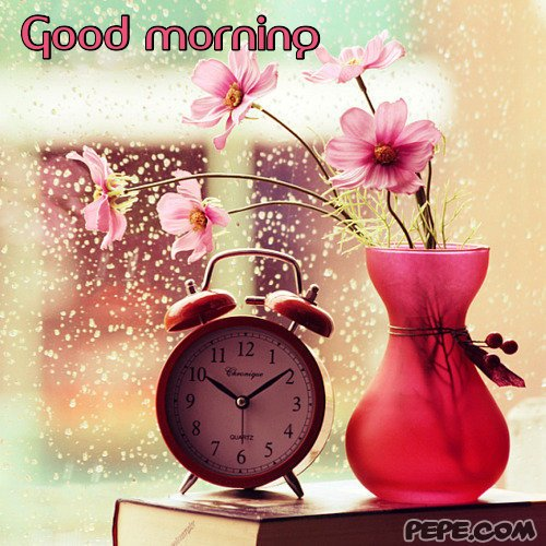 Good morning greeting cards images free download good morning previous card m4hsunfo