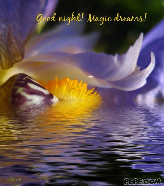 Good night magic dreams greeting card on pepe com