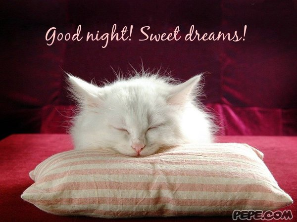 Good Night! Sweet Dreams!   Greeting Card On PEPE.com