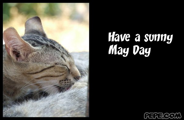 Have a sunny May Day