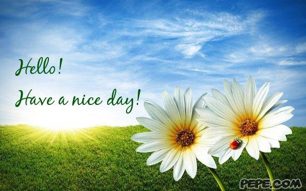 FOTO TË MUAJIT PRILL - Faqe 3 Hello_have_a_nice_day_1