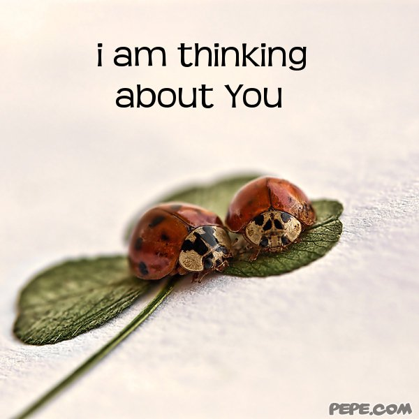 i am thinking about You - greeting card on PEPE.com