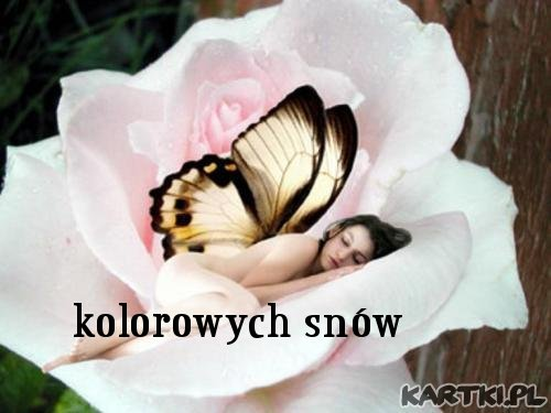 http://scouteu.s3.amazonaws.com/cards/images_vt/merged/kolorowych_snow_0.jpg
