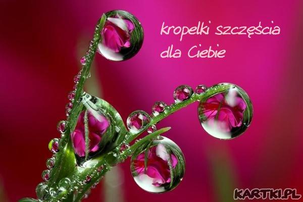 http://scouteu.s3.amazonaws.com/cards/images_vt/merged/kropelki_szczescia_dla_ciebie_1.jpg