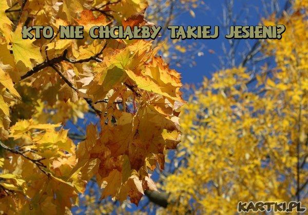 Kto chciałby takiej Jesieni?
