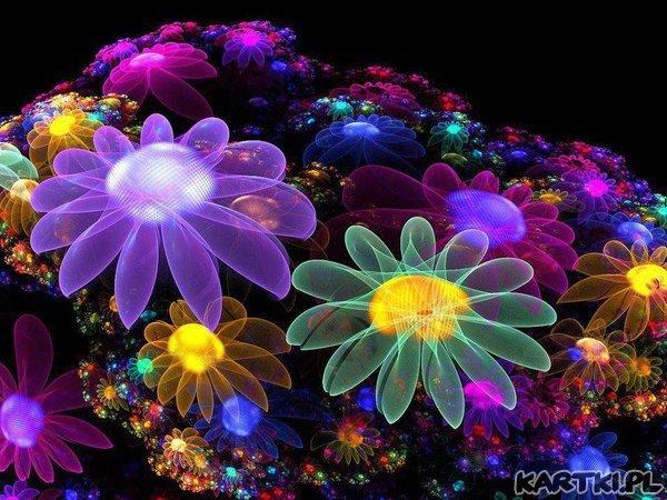 kwiaty_393.jpg