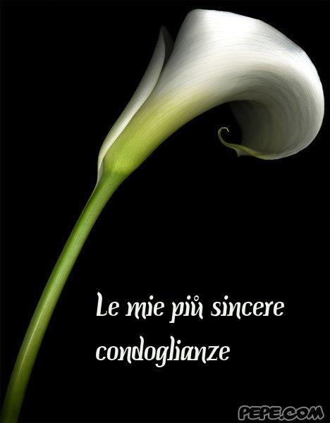 Preferenza Le mie piů sincere condoglianze - Cartolina virtuale PEPE.com YE26