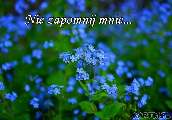 Nie zapomnij mnie...