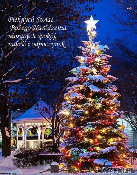 Pięknych Świąt Bożego Narodzenia niosących spokój , radość i odpoczynek...