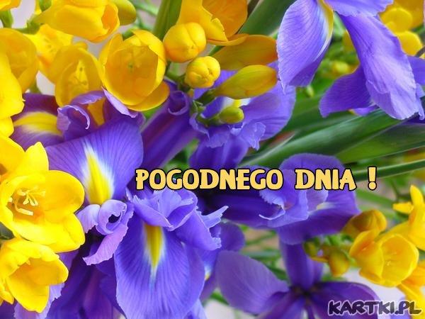 http://scouteu.s3.amazonaws.com/cards/images_vt/merged/pogodnego_dnia_6.jpg
