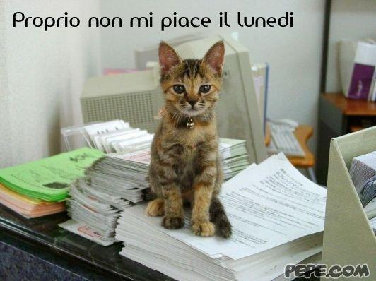 vt thesis dissertation