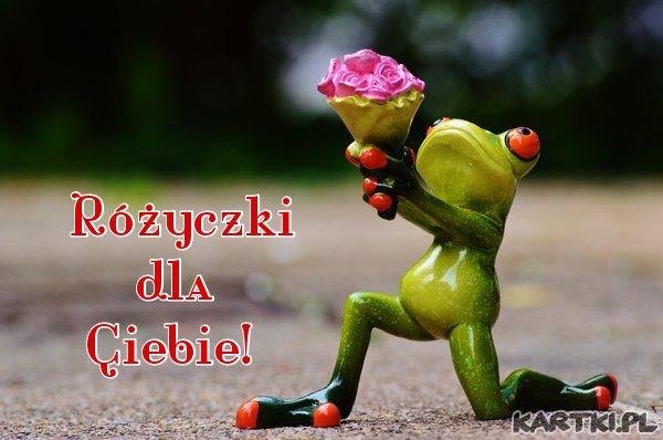 Różyczki dla Ciebie!