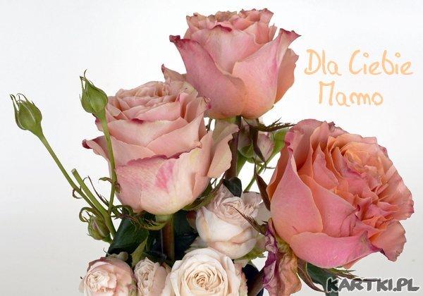 Z okazji Dnia Matki!
