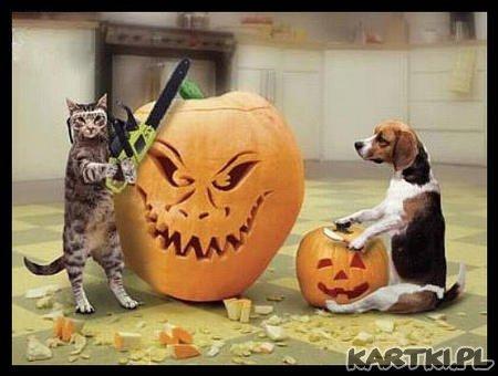 Zabawa Halloweenowa