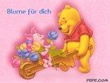 Blume für dich