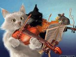 cat Musik