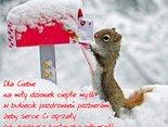 Cieplutkie pozdrowienia na zimowy dzionek