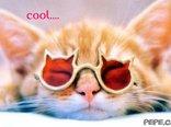 cool....