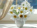 http://scouteu.s3.amazonaws.com/cards/images_vt/thumbs/czy_moje_sloneczko_usmiechniete_wstalo_0.jpg