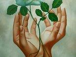Dla Ciebie róża...proszę :)