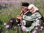 Gdy miłość pokonuje czas...