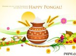 Happy Pongal!