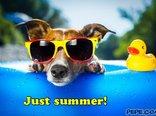 Just summer!