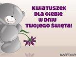 Kwiatuszek dla Ciebie