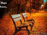 Magia Jesieni...