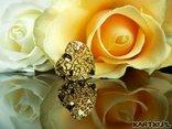Mowa kwiatow: Róża żółta - odwzajemnij moją miłość