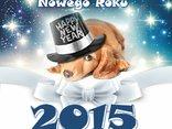 na Nowy Rok życzę Ci samych szczęśliwych dni!