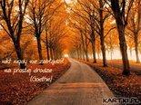 nikt nigdy nie zabłądził na prostej drodze(Goethe)