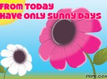 Only sunny days