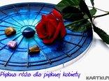 Piękna róża dla pięknej kobiety