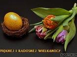 Pięknej i Radosnej Wielkanocy