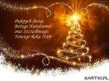 Pięknych Świąt Bożego Narodzenia i Szczęśliwego Nowego Roku!
