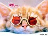 ♥przez różowe okulary...