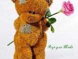 Роза к Тебя
