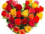 розы на тебя