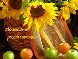 słoneczne pozdrowienia i miłego dnia życzenia dla Ciebie