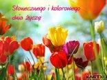 Słonecznego i kolorowego dnia życzę