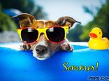 Sommer!