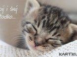 śpij słodko mój kotku...